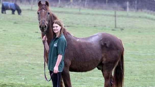 il-cavallo-piu-vecchio-del-mondo