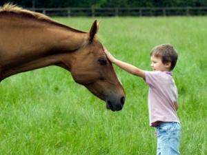 Cavallo e bambino