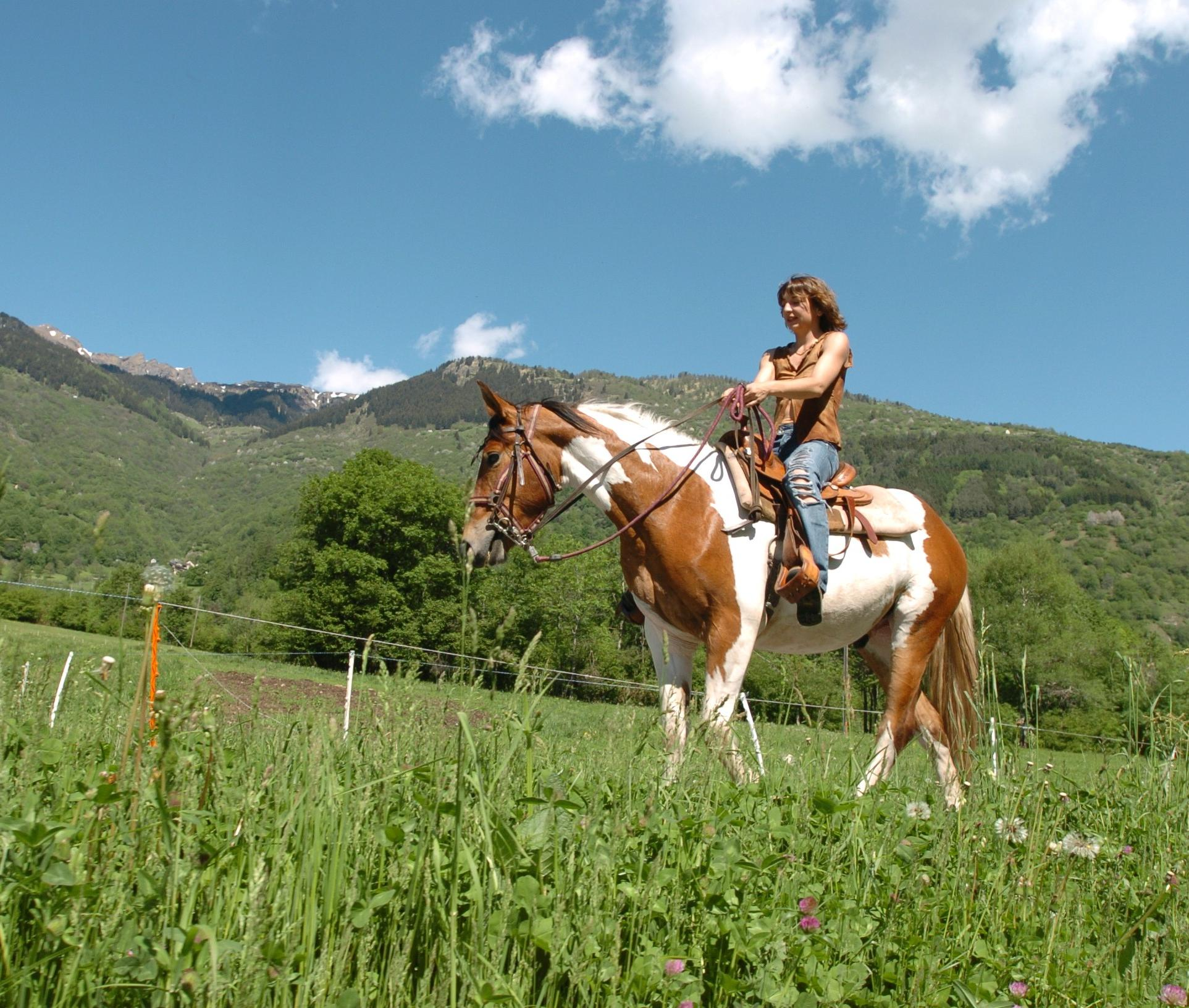 andature cavallo
