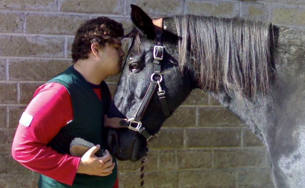 cavalli autismo