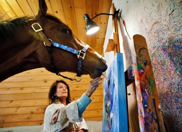 cavallo artista