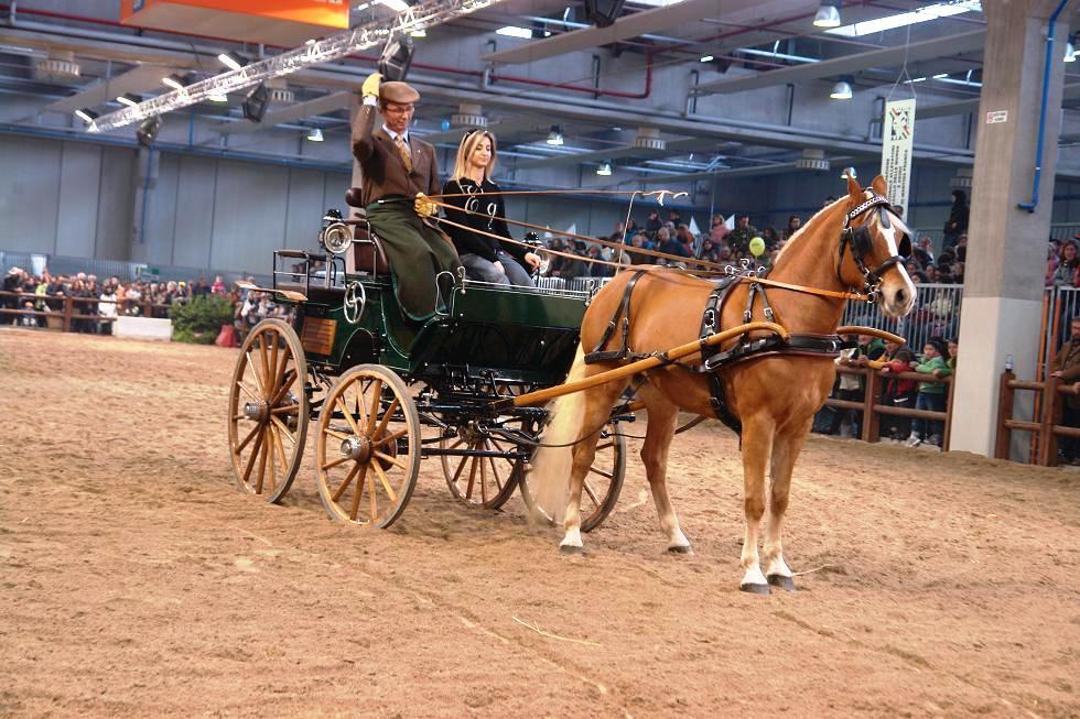 Campionato Italiano Completo Attacchi Cavalli Pony