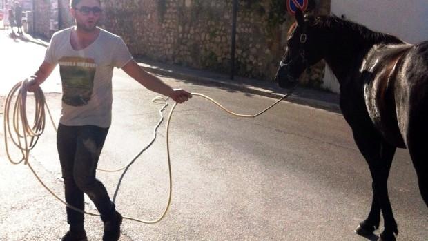 Finanziere placa Cavallo a Venafro