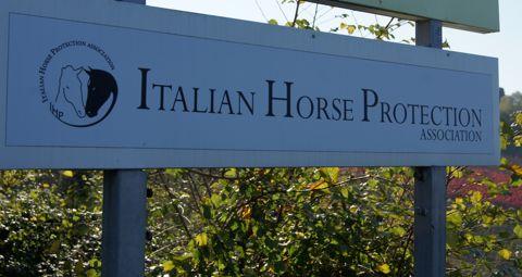 Italian horse protection association