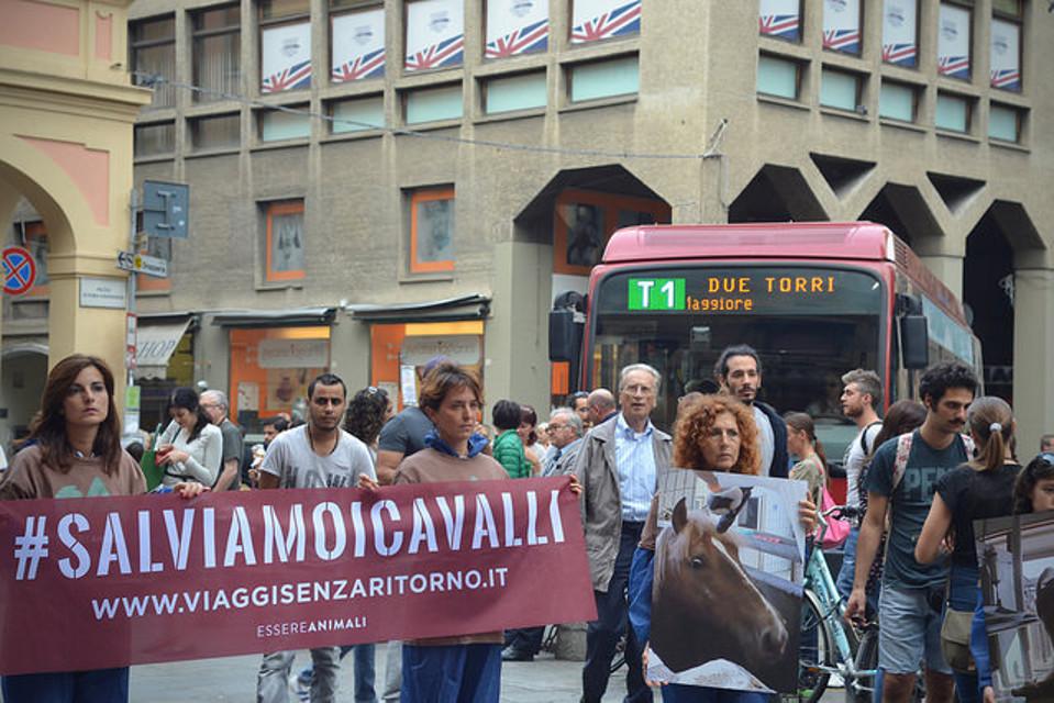 Viaggi Senza Ritorno piazza Bologna