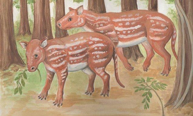 Cambaytherium Thewiss Anello Mancante Evoluzione Cavalli