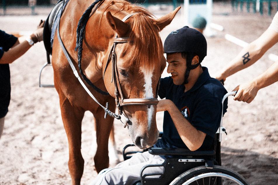 Ippoterapia e disabilità: cavalli solidi, docili e addestrati.
