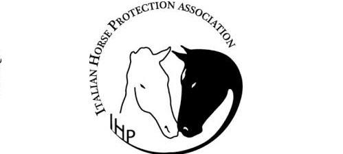 L'IHP denunacia la morte di Flambo per i metodi educativi di un istruttore FISE