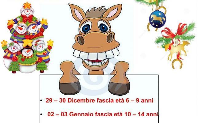 Campo natalizio per conoscere il cavallo a Bologna