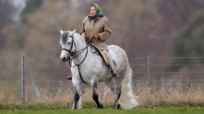 Un regalo per la regina Elisabetta II? Sicuramente qualcosa inerente i cavalli