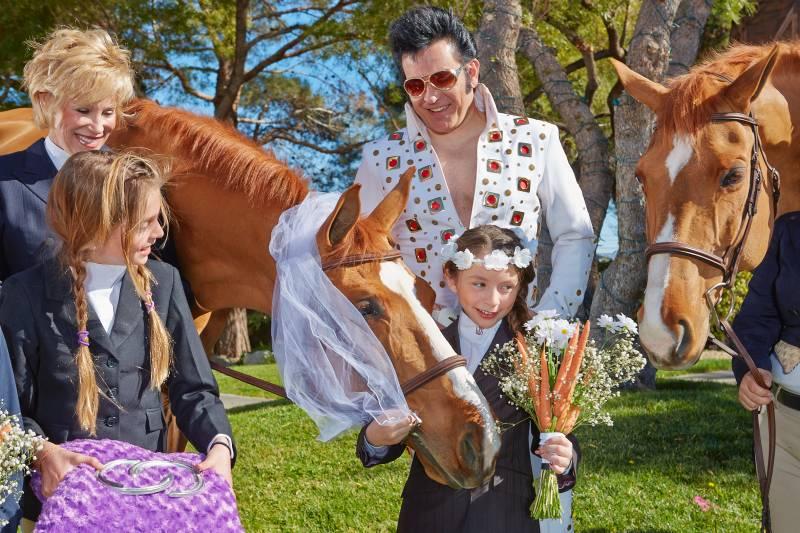Due cavalli si sposano a Las Vegas