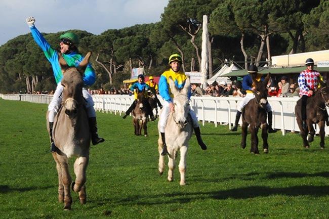Gran Premio di Somaropoli all'ippodromo San Rossore