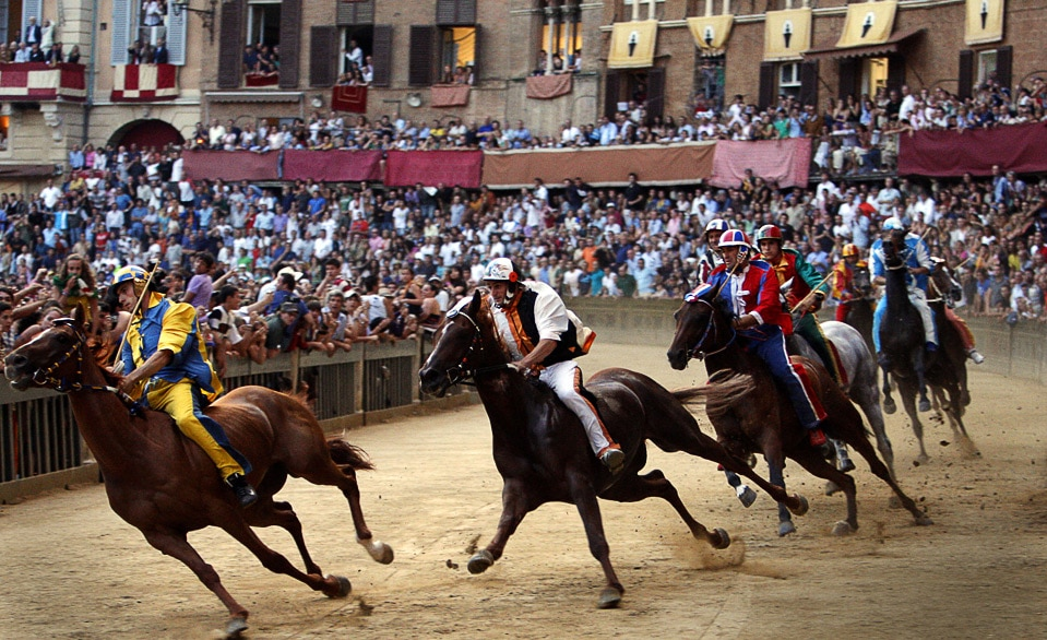 Non ci saranno corse per i cavalli da Palio per quindici giorni prima della Tratta