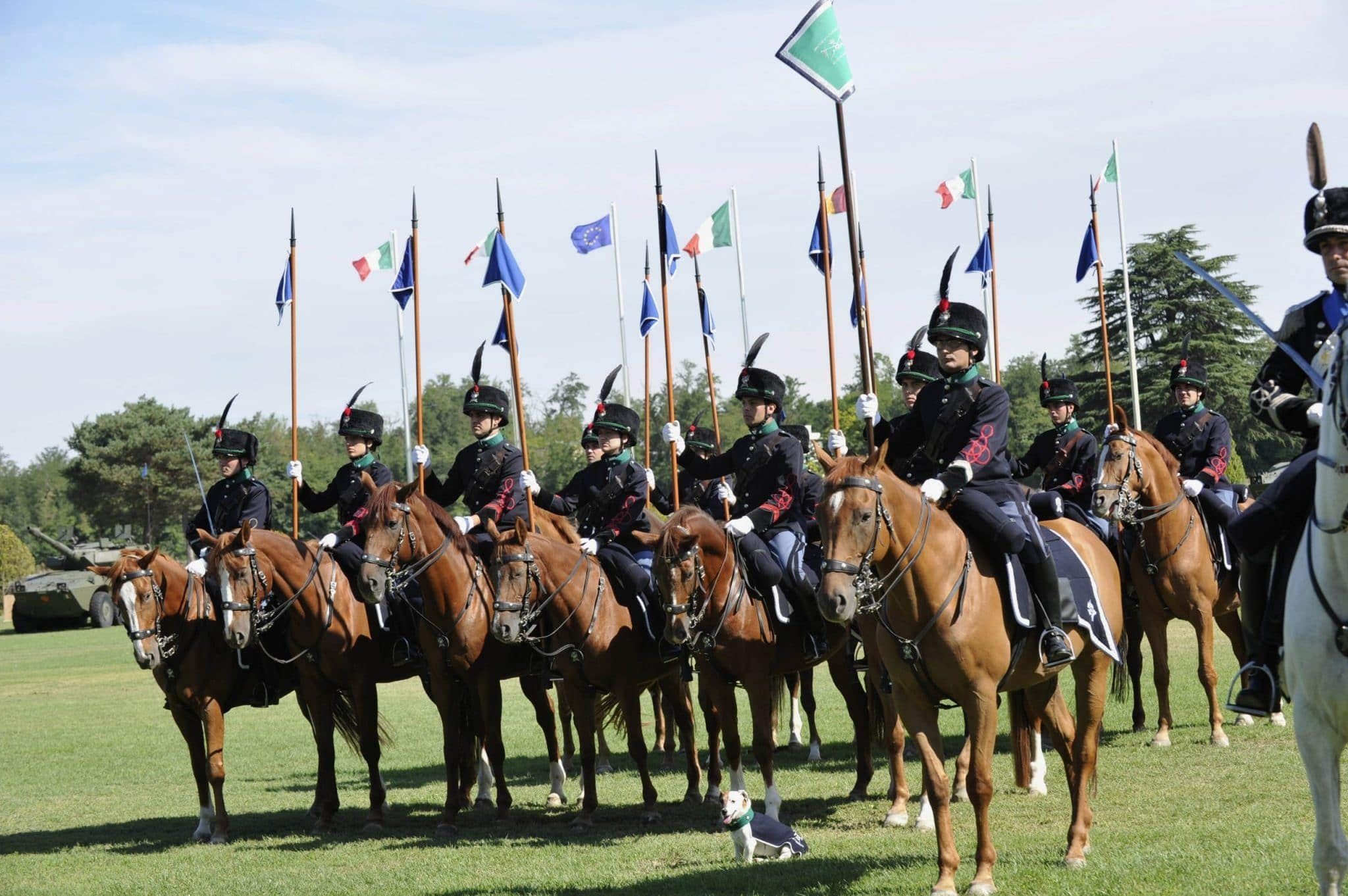 """Torna l'esercito all'esposizione """"Cavalli a Roma"""""""