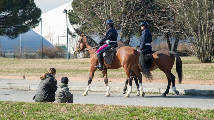 Al parco Colonnetti cavalli e cani per regolare la microcriminalità