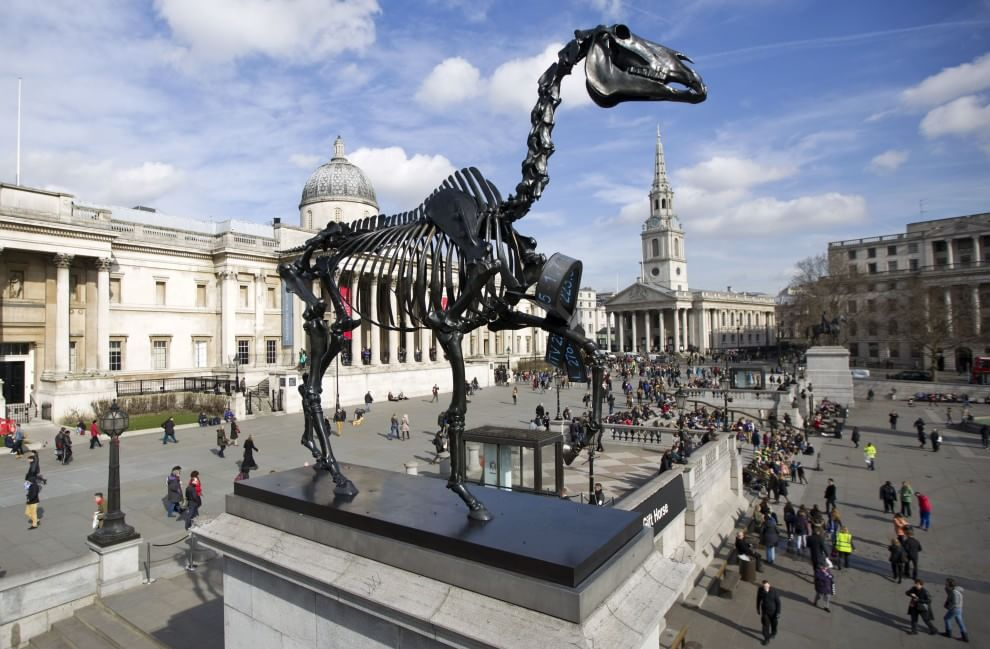 Nuova statua a Trafalgar Square lo scheletro di un cavallo