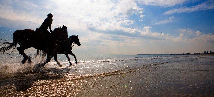 La Festa di primanera a cavallo nel vadese