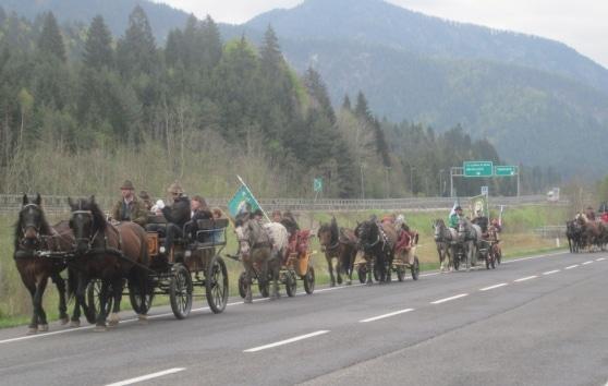 """Manifestazione """"Cavalli senza confini"""""""