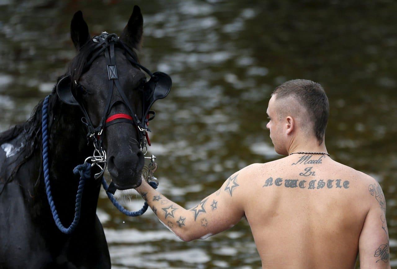 Appleby si prepara ad accogliere la tradizionale fiera dei cavalli