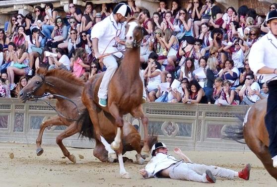 Palio di Siena: abbattuta Periclea per un infortunio