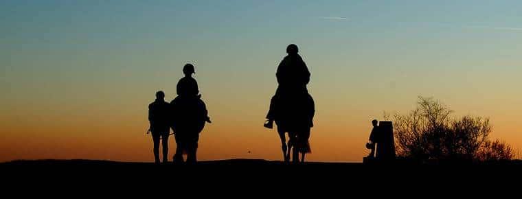 Passeggiate a cavallo sulla pista ciclabile: sono un problema le deiezioni equine