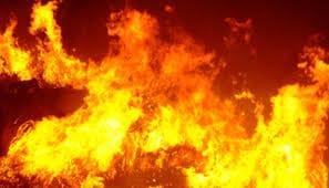 Incendio in un maneggio cavalli salvi ma senza cibo