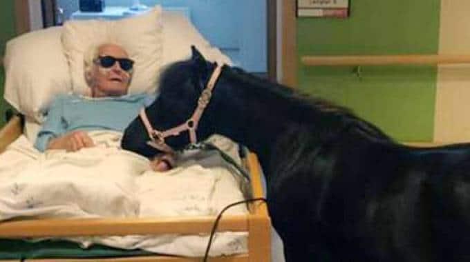 Bolla va a trovare il suo amico in ospedale per l'estremo saluto