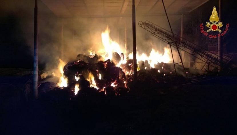 Incendio nell'avellinese: muoiono un asino e due cavalli