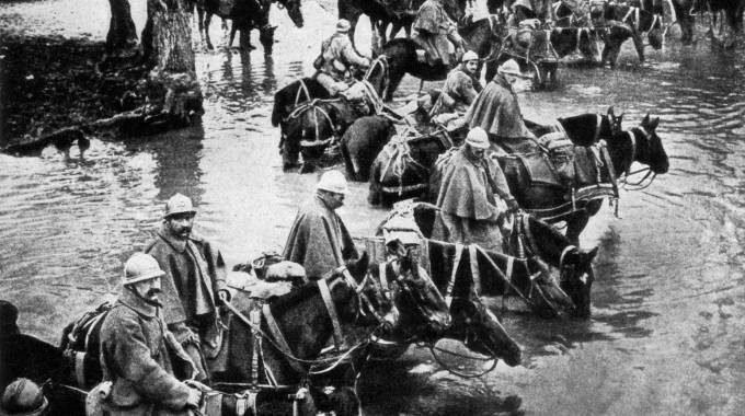 Mostra fotografica sulla Prima Guerra Mondiale: cavalli muli e cani in prima linea