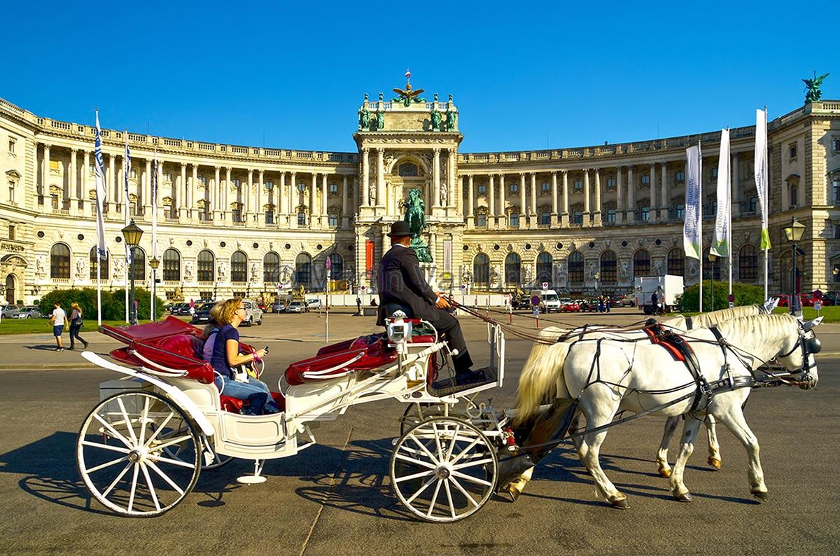 Vienna: animalisti in piagiama per protestare contro i Fiaker